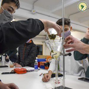 Experiencias en el Laboratorio de Ciencias